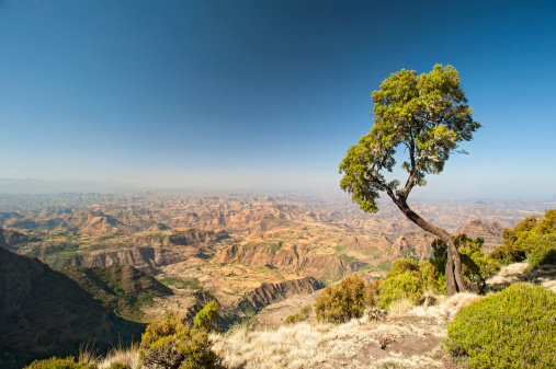 Nature and Landscapes in Ethiopia
